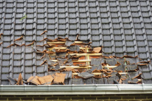 Preventing Roof Damage Due to Fallen Leaves in Toronto